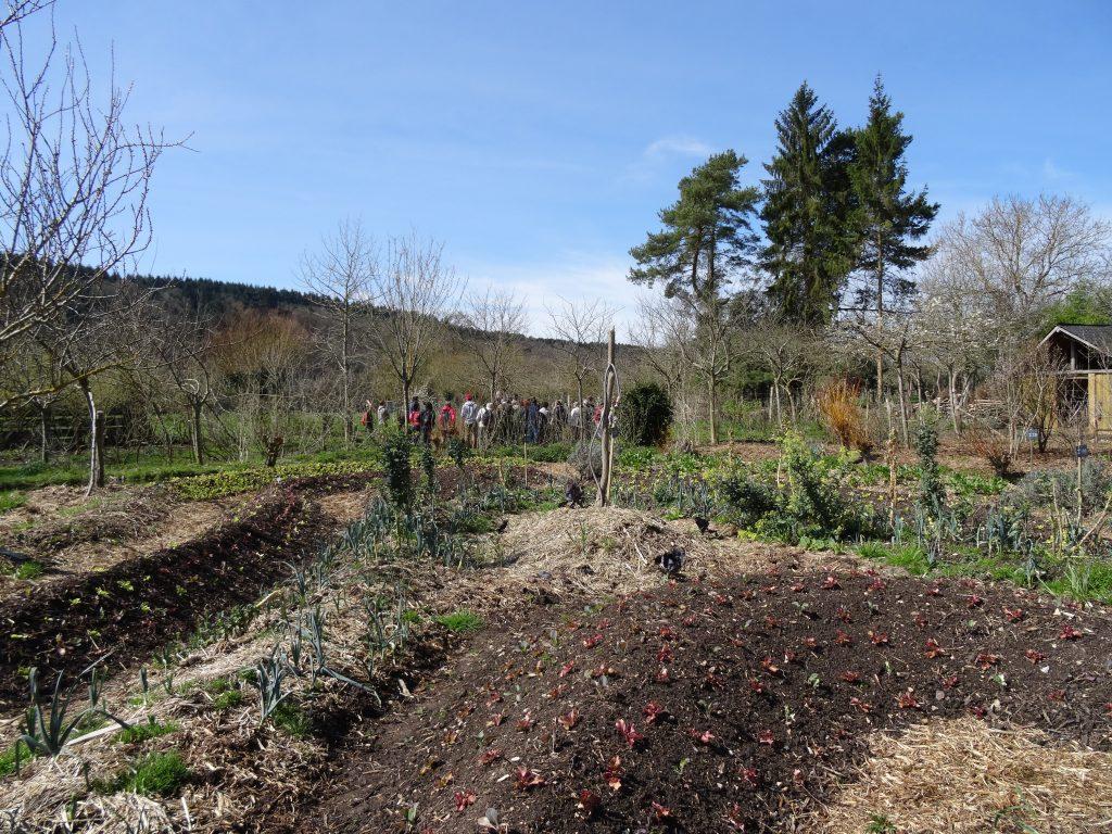 visite_ferme_BecHellouin_permaculture_6